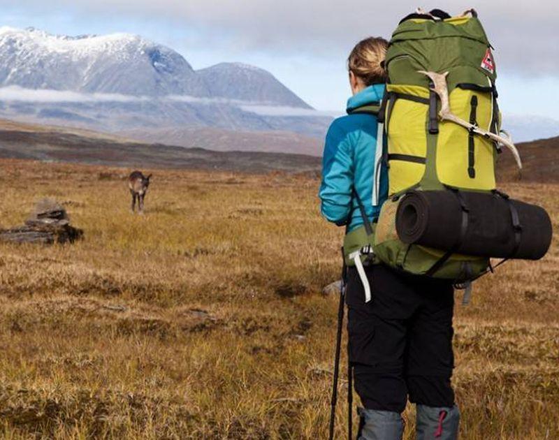 Realizar el Camino organizado o por libre: Ventajas e inconvenientes