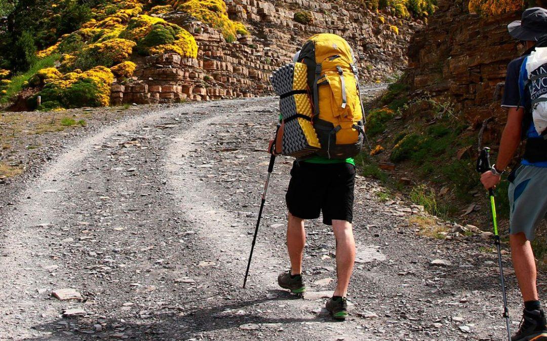 Qué empresas existen para viajes organizados del camino