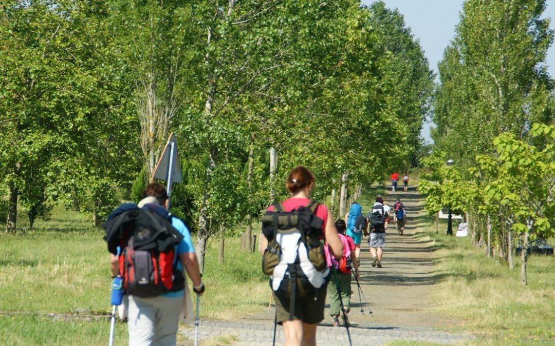 El Camino de Santiago: Albergues