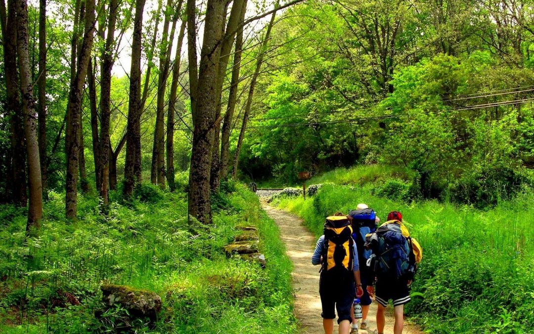 Foros del Camino de Santiago