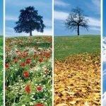 ¿Qué época del año es mejor para hacer el camino?