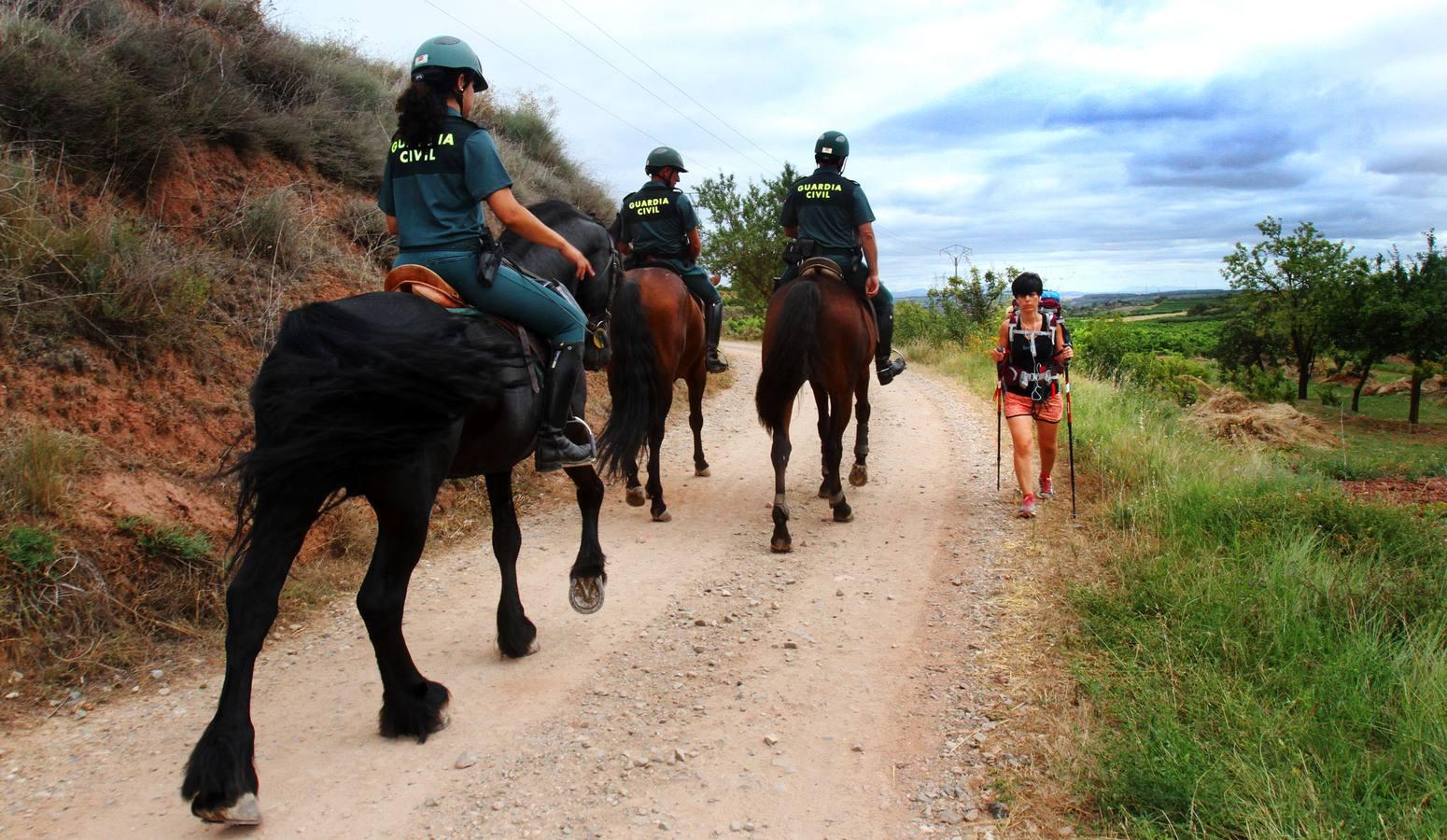 Es seguro hacer el Camino de Santiago. 5 Consejos