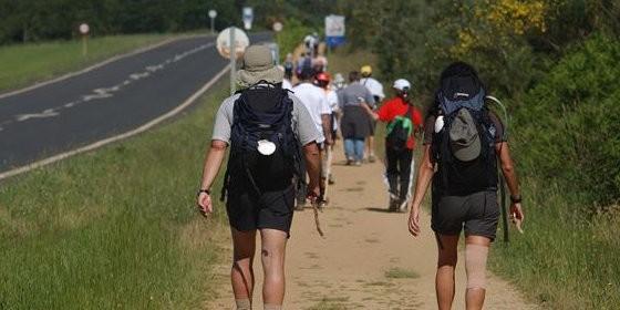 Clasificación y tipos de peregrinos en el Camino de Santiago